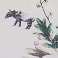 覓覓-馬來貘 (米白)